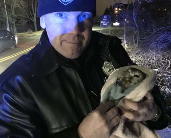 Wait, we nominate Officer Kaes!! He ALWAYS goes above and beyond to help animals – day, night, on duty, or off duty. Doesn't matter if its a bird, squirrel, opossum, owl, turtle, snake, etc. Right, @NE_Wildlife   Remember #StoneColdSteveOpossum #HulkHogan #TweetyBird and others😆 https://t.co/oA0mdSCLLz https://t.co/NApBz6w4Wn